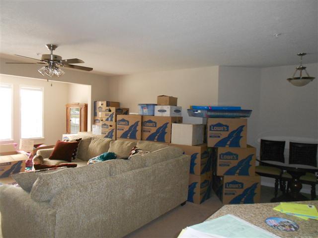 moving boxes and new sofa