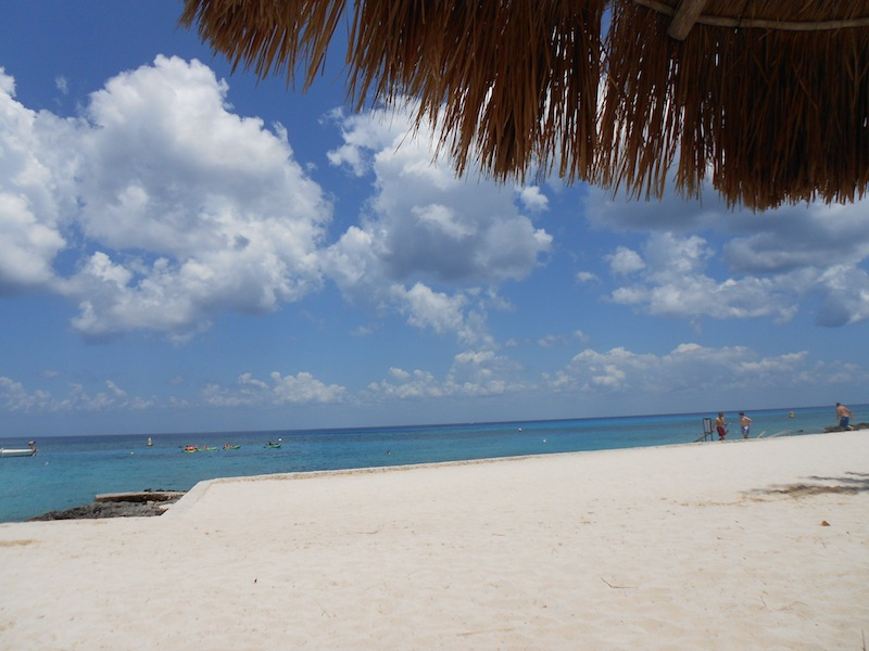 The view from our lounge chairs in Cozumel. Chankanaab National Park.