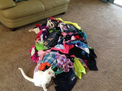 Pile of clothes to declutter (cat included for scale)